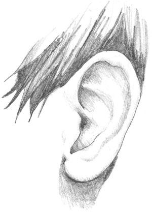 ear_drawing